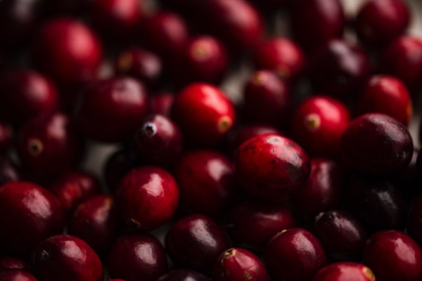 The Key to Great Cranberry Sauce
